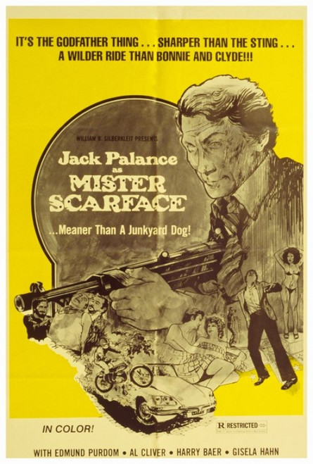 Mister Scarface Movie Poster Print (27 x 40) - Item # MOVEH4719