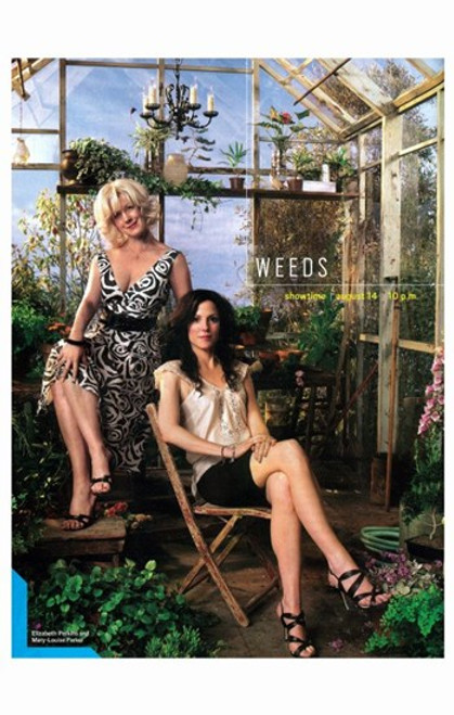 Weeds (TV) Movie Poster (11 x 17) - Item # MOV371486