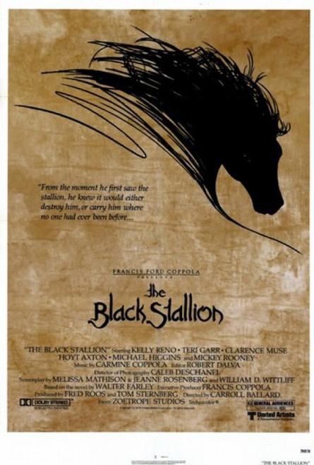 Black Stallion Movie Poster (11 x 17) - Item # MOV195896