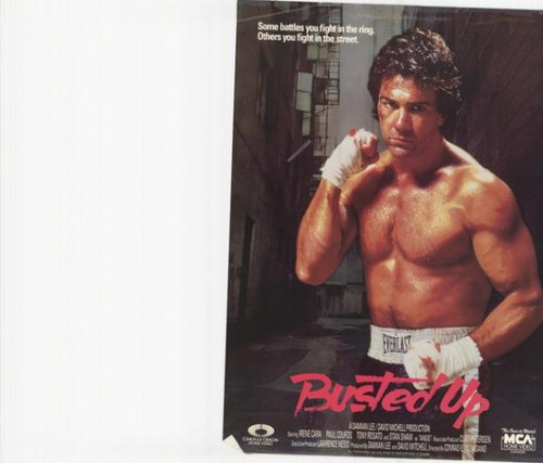 Busted Up Movie Poster Print (27 x 40) - Item # MOVEH5327