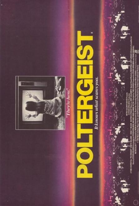 Poltergeist Movie Poster (11 x 17) - Item # MOV379029