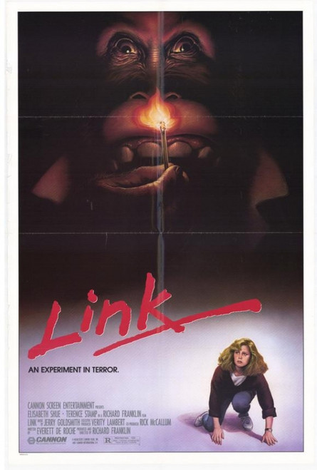 Link Movie Poster (11 x 17) - Item # MOVAE3678