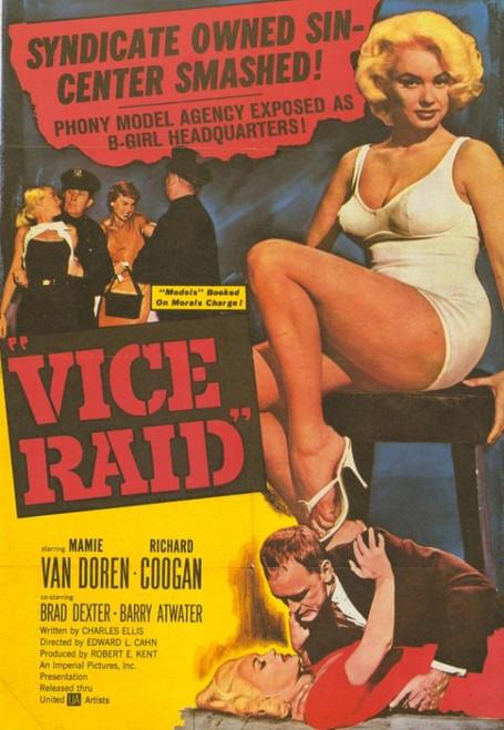 Vice Raid Movie Poster Print (27 x 40) - Item # MOVIH4746