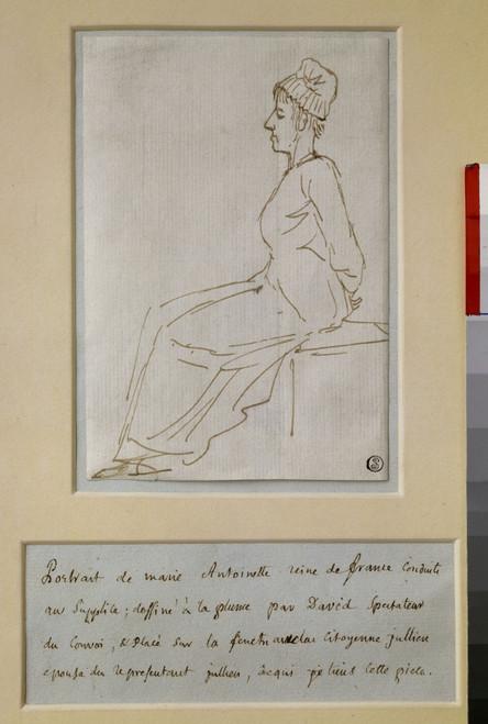 1583  Jacques Louis David French School Poster Print - Item # VAREVCCRLA001YF343H