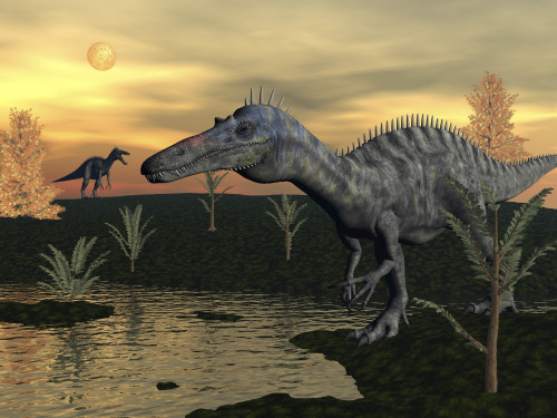 Suchomimus Dinosaurs Walking Next To Pond At Sunset With
