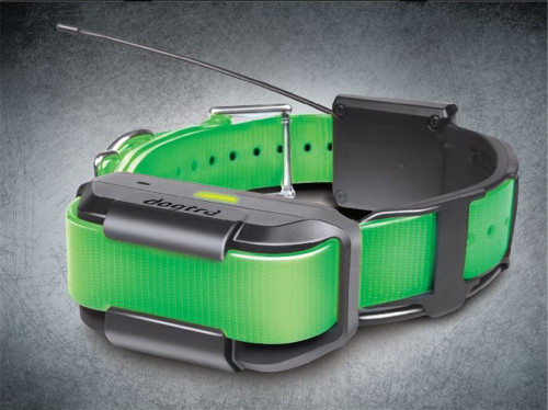 Pathfinder Extra Collar Green (Track & Train)