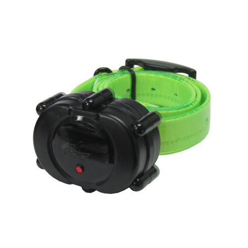 D.T. Systems Micro-iDT Remote Dog Trainer Add-On Collar Black Green (IDT-ADDON-G)