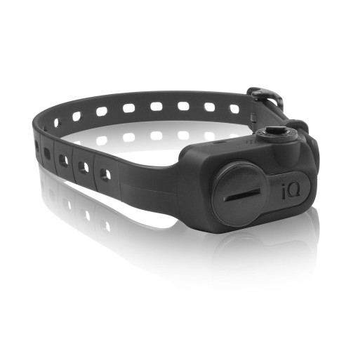 Dogtra iQ No Bark Collar Black (IQ-BARK-BLK)