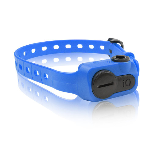 Dogtra iQ No Bark Collar Blue (IQ-BARK-BLU)