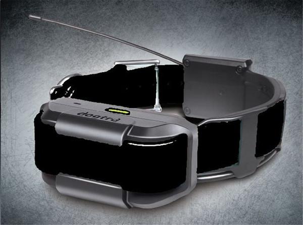 Pathfinder Extra Collar  Black (Track & Train)