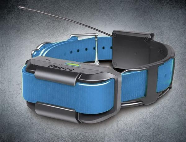 Pathfinder Extra Collar Blue (Track & Train)