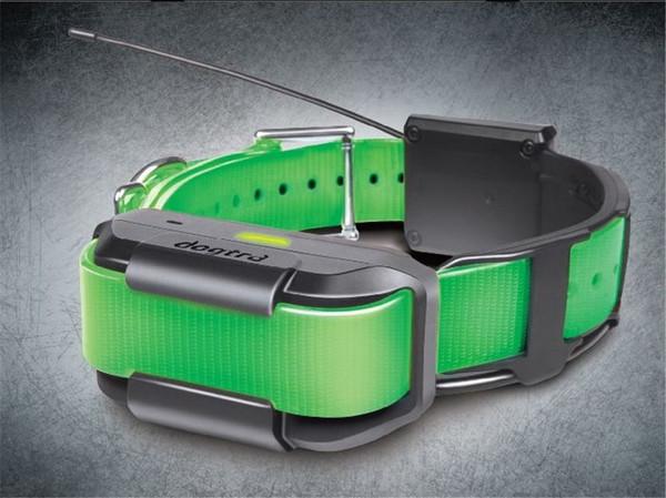 Pathfinder Extra Collar Green (Track & Train)