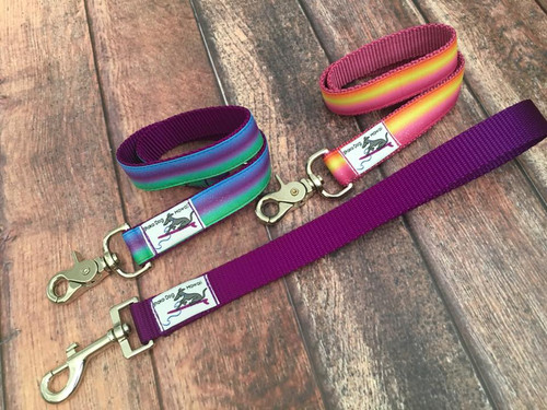 Premade Ombre Glitter Multi Dog Leash System Set