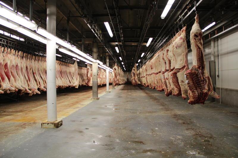 meat-process.jpg