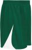 Denver Shorts, Forest/White