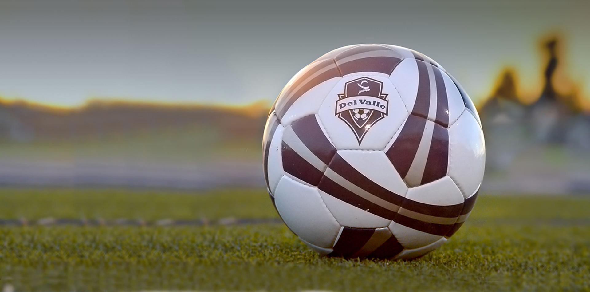 Custom Logo Ball On Field
