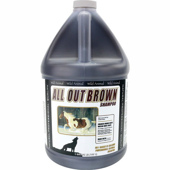 All Out Brown Shampoo  50:1