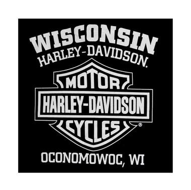 Harley-Davidson Men's Eagle Long Sleeve T-Shirt Black Graphic Tee 30296660 - Wisconsin Harley-Davidson