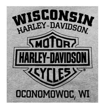 Harley-Davidson Men's Pullover Hooded Sweatshirt, H-D Eagle Hoodie Gray 30296665 - Wisconsin Harley-Davidson