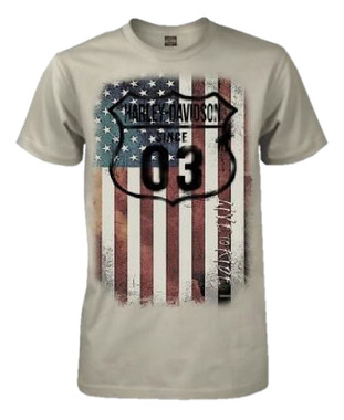 Harley-Davidson Men's 1903 American Flag Short Sleeve T-Shirt, Ice Gray - Wisconsin Harley-Davidson