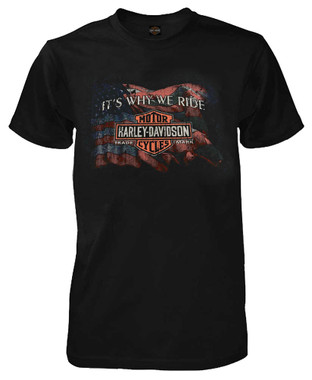 Harley-Davidson Men's Why We Ride Short Sleeve Crew-Neck T-Shirt, Black R001667 - Wisconsin Harley-Davidson