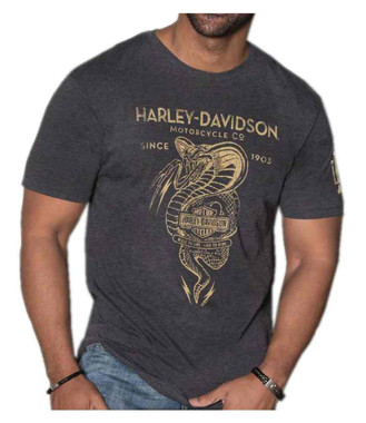 Harley-Davidson Men's Distressed Snake Poison Short Sleeve T-Shirt - Charcoal - Wisconsin Harley-Davidson