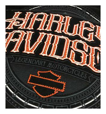 Harley-Davidson Women's Embellished H-D Long Sleeve Tee w/Thumbholes, Black - Wisconsin Harley-Davidson