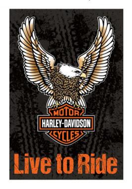 Harley-Davidson Live To Ride Decorative Flag, 29 x 43in - Orange/Black 13S4907FB - Wisconsin Harley-Davidson