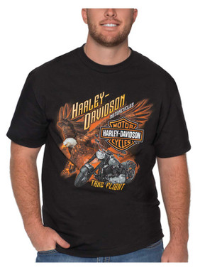 Harley-Davidson Men's Take Flight Eagle Short Sleeve Crew-Neck Cotton Tee, Black - Wisconsin Harley-Davidson