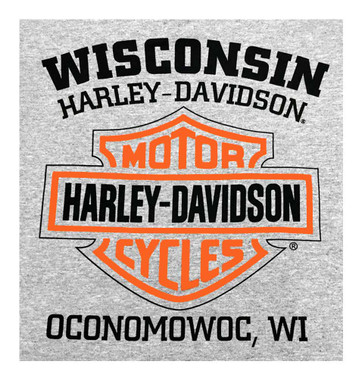 Harley-Davidson Men's T-Shirt, Long Sleeve Tee, Heritage H-D Gray 30296638 - Wisconsin Harley-Davidson