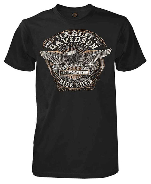 Harley-Davidson Men's Endeavor Distressed Eagle Short Sleeve T-Shirt, Black - Wisconsin Harley-Davidson