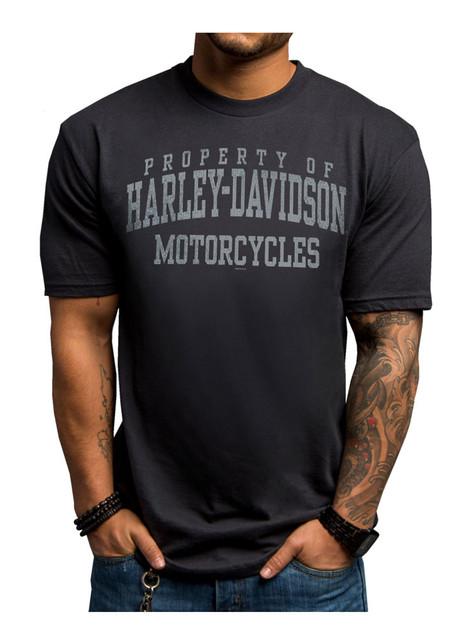 Harley-Davidson Men's Smooth Transition Short Sleeve T-Shirt, Blue 5504-HE9A - Wisconsin Harley-Davidson