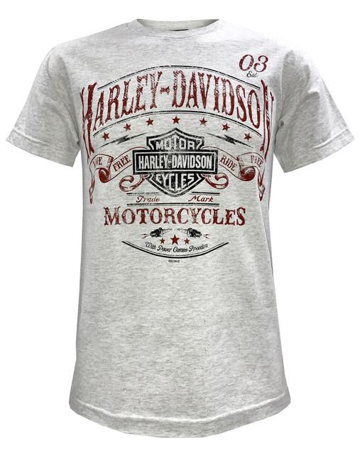 Harley-Davidson Men's Journey Distressed Short Sleeve T-Shirt, Washed Ash Gray - Wisconsin Harley-Davidson