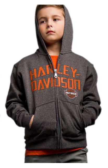 Harley-Davidson Little Boy's Brazen Defiance Full-Zip Hooded Sweatshirt, Gray - Wisconsin Harley-Davidson
