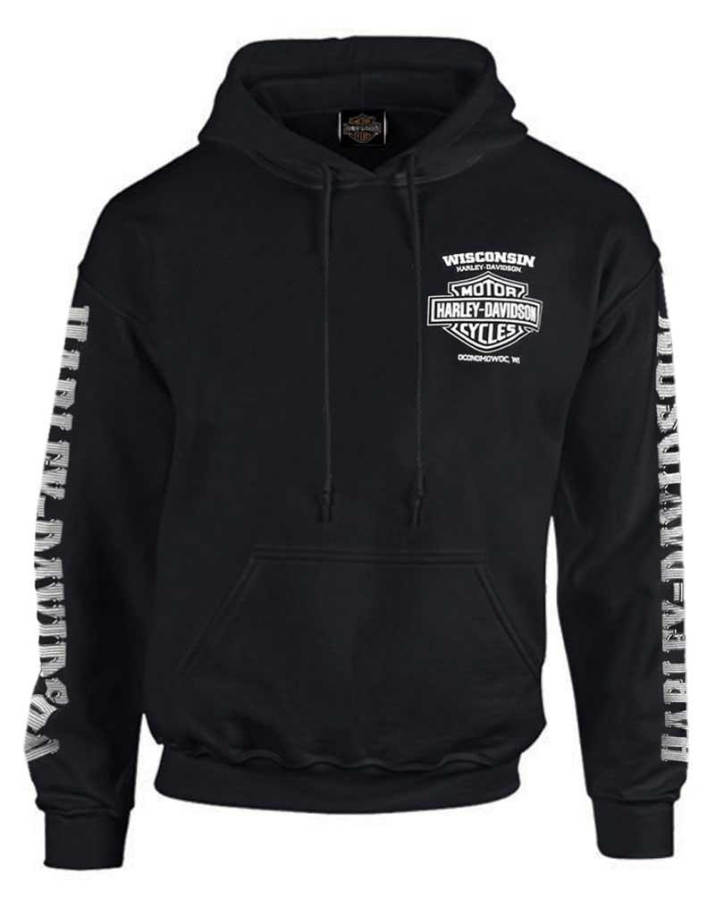 Black Harley-Davidson Men/'s Skull Lightning Crest Graphic Long Sleeve Shirt