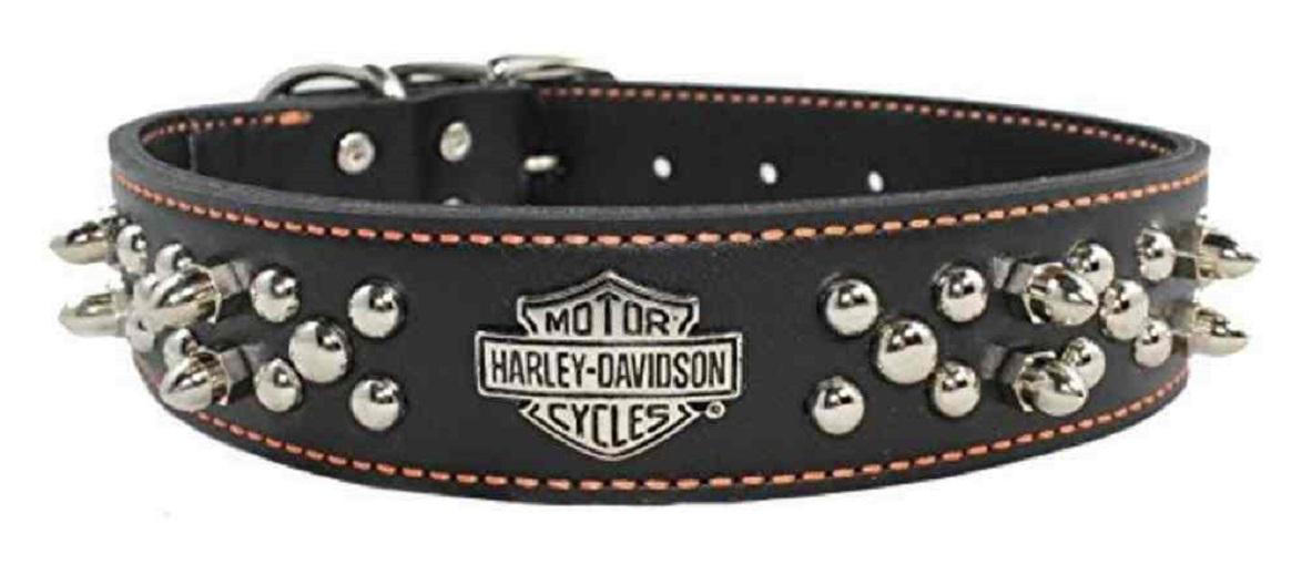 Orange Bar and Flames 1 x 6 Harley-Davidson Nylon Dog Leash Head