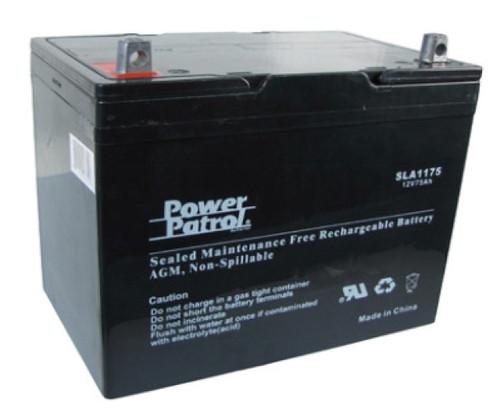 Interstate® Batteries Power Patrol® 12V 100Ah Maintenance-Free Rechargeable  Sealed Deep-Cycle VRLA/AGM Battery (SLA1185)