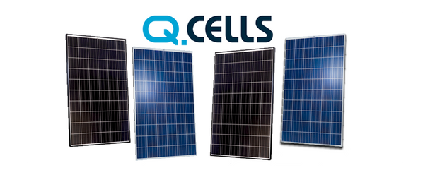 QCells QPRO260P 260W 24V Solar Panel