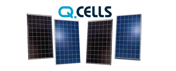 QCells QPRO255P 255W 24V Solar Panel