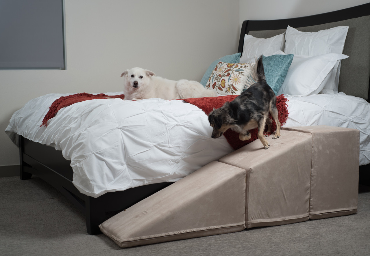 Dog Ramp For Bed >> Tall Dog Ramps For Couches Beds Usa Made Royal Ramps