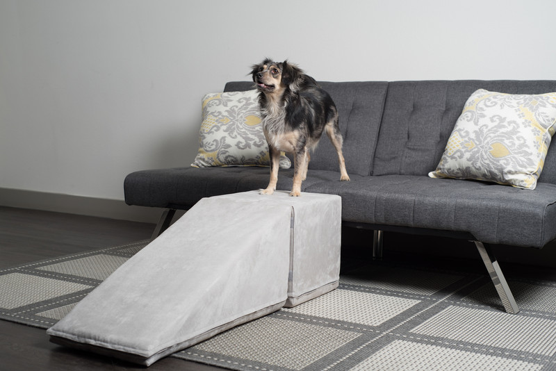 Foam Dog Ramps For Couches Amp Beds Usa Made Royal Ramps