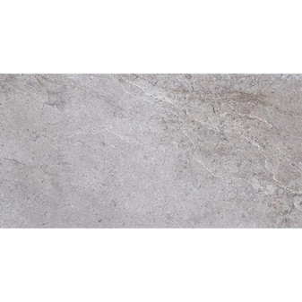 "ENVOGUE GRIS  12.6""x24.6"" Tile"