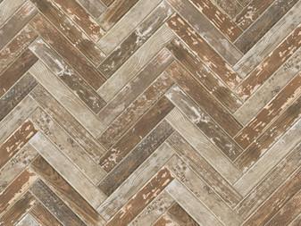 Kentucky American Elm 2x16 Field ,3x36 Bullnose, 6x36 Field Tile