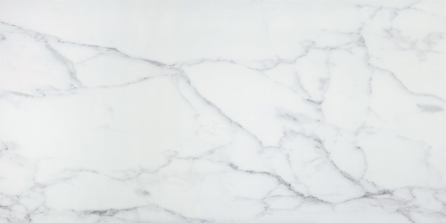 Imagine Stone Carrara Polished & Matte 24x48