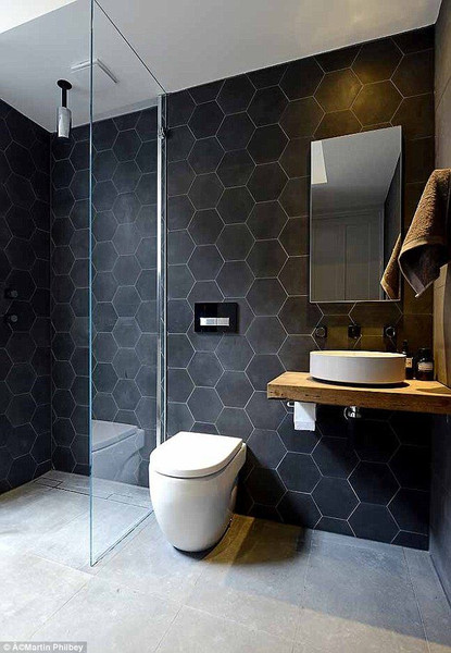 "Black Fox Porcelain 8"" Hexagon Matte Tile on Wall $19.99 Sq. Ft. Suggested Retail"