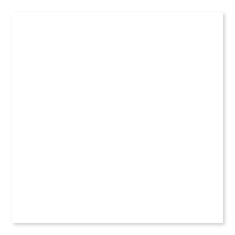 White Ice Bright  U081 2×8, 3×6, 3×12, 4×4, 4×10, 4×16, 6×6, 6×18, 9×13, 13×24, 3×12 Picket