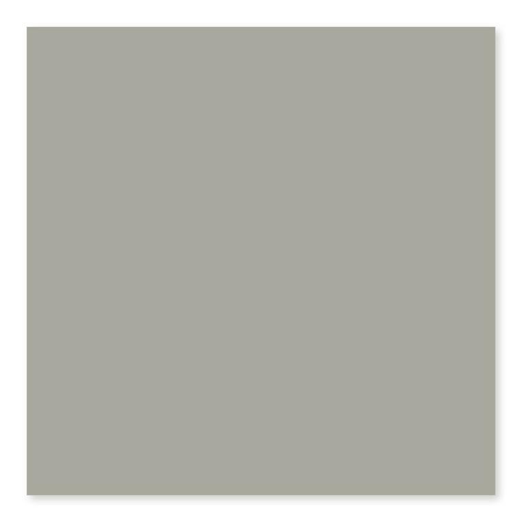 Taupe Matte  U289 3×6, 4×4, 4×10, 4×16, 6×6