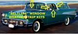 Window Weatherstrip,(Beltline)