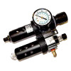 C35002 - TSM-35 Filter/Regulator Assembly