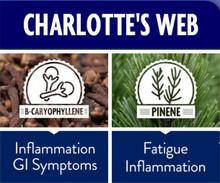 Charlotte's Web .8%THC, 18%CBD